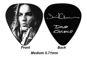 David Gilmour Picks